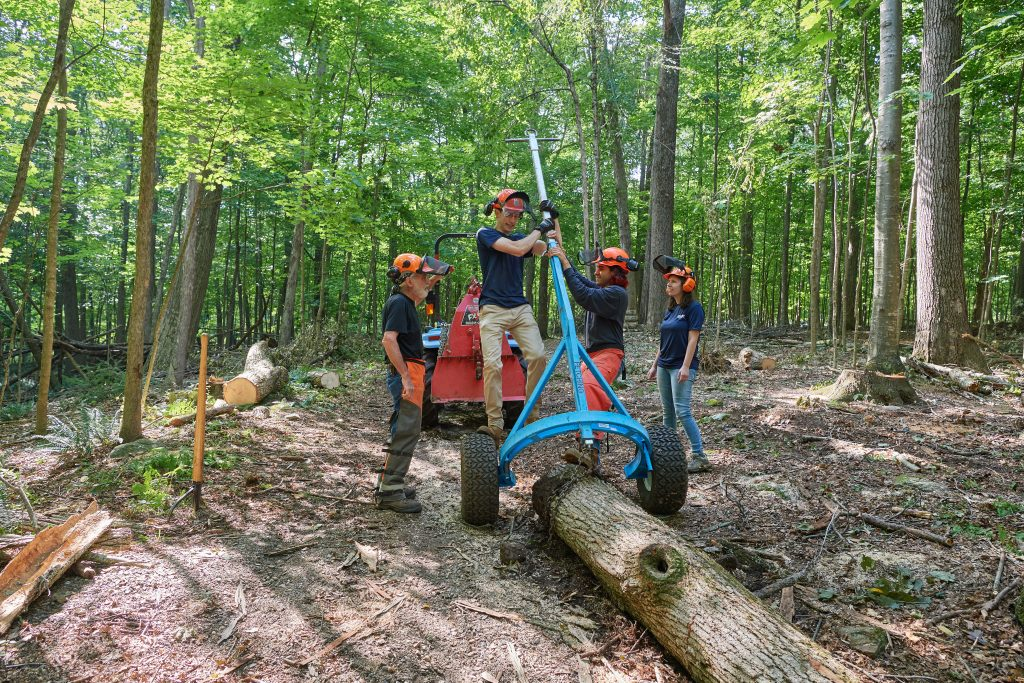 Thomas Worthey, forest sustainability extension educator, left,  Eric Colleran '22 (CAHNR) Jose Ayala '22 (CAHNR)  and Alexandra Pouliot '23 (CAHNR) use chains, a trailer and a tractor to pull a log from the Fenton Tract of the UConn Forest near Horsebarn Hill Road on Aug. 2, 2021. (Peter Morenus/UConn Photo)
