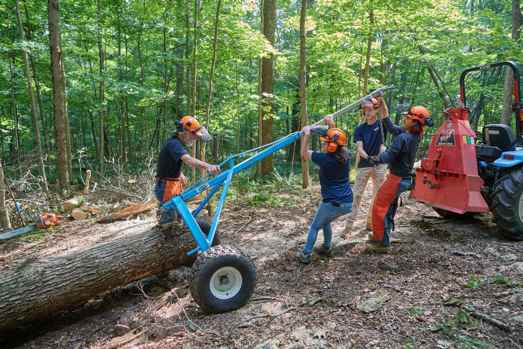 Thomas Worthey, forest sustainability extension educator, left,  Alexandra Pouliot '23 (CAHNR), Eric Colleran '22 (CAHNR), and Jose Ayala '22 (CAHNR) use chains, a trailer and a tractor to pull a log from the Fenton Tract of the UConn Forest near Horsebarn Hill Road on Aug. 2, 2021. (Peter Morenus/UConn Photo)