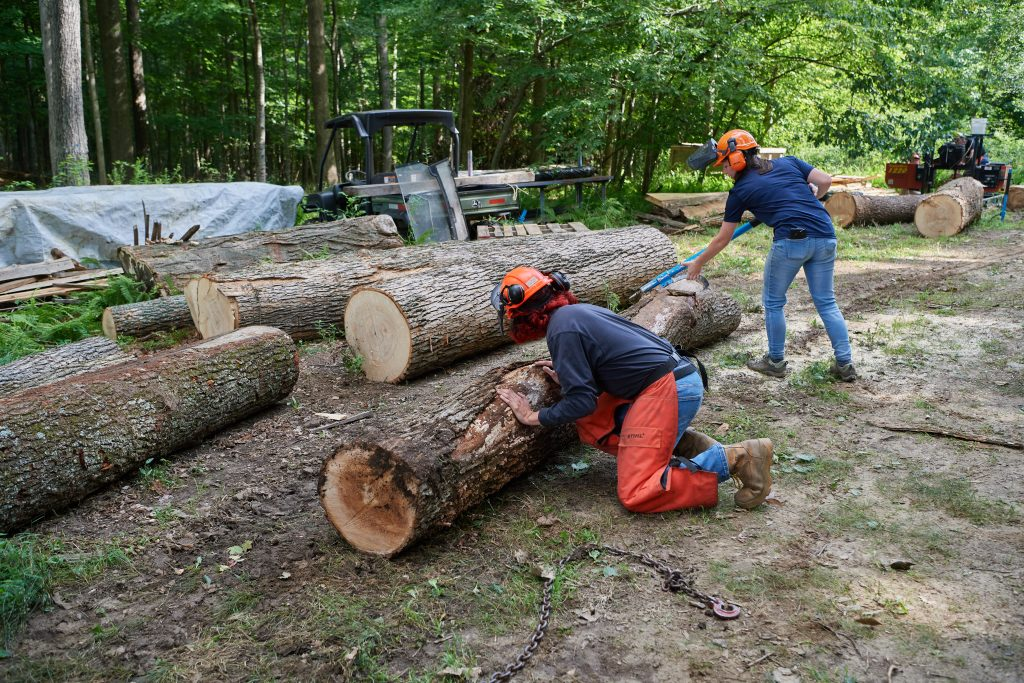 Jose Ayala '22 (CAHNR), left, and Alexandra Pouliot '23 (CAHNR) roll logs in the Fenton Tract of the UConn Forest near Horsebarn Hill Road on Aug. 2, 2021. (Peter Morenus/UConn Photo)