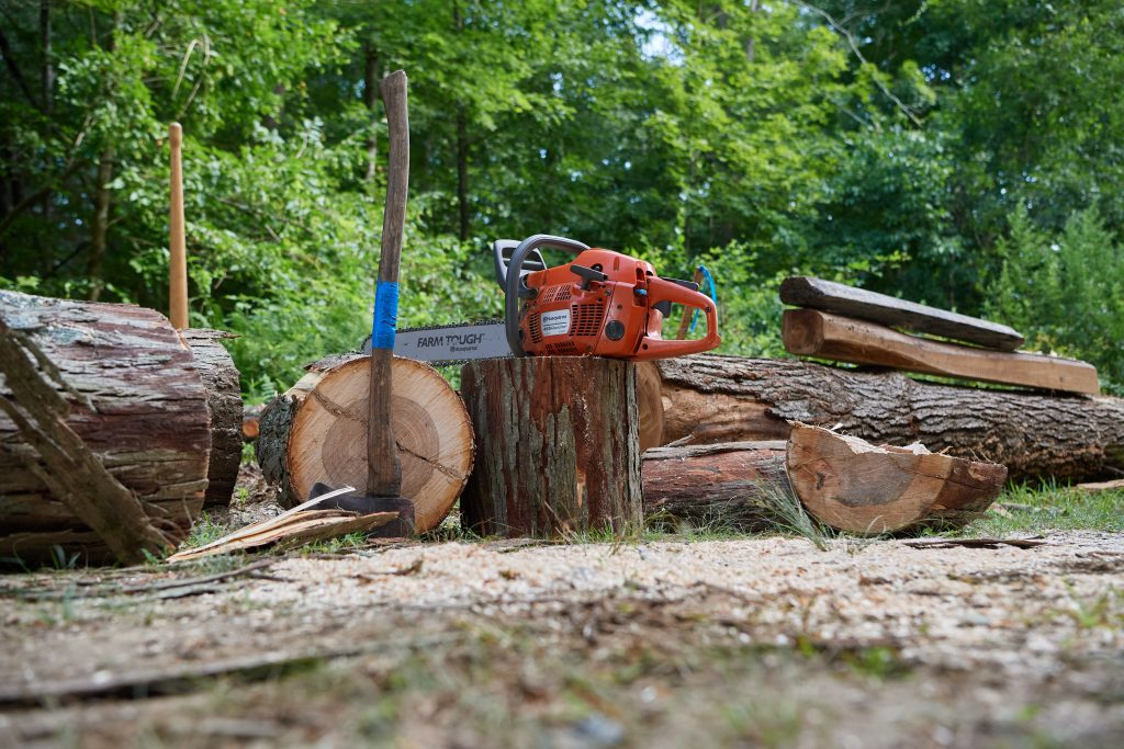 A chainsaw axes and logs seen in the Fenton Tract of the UConn Forest near Horsebarn Hill Road on Aug. 2, 2021. (Peter Morenus/UConn Photo)