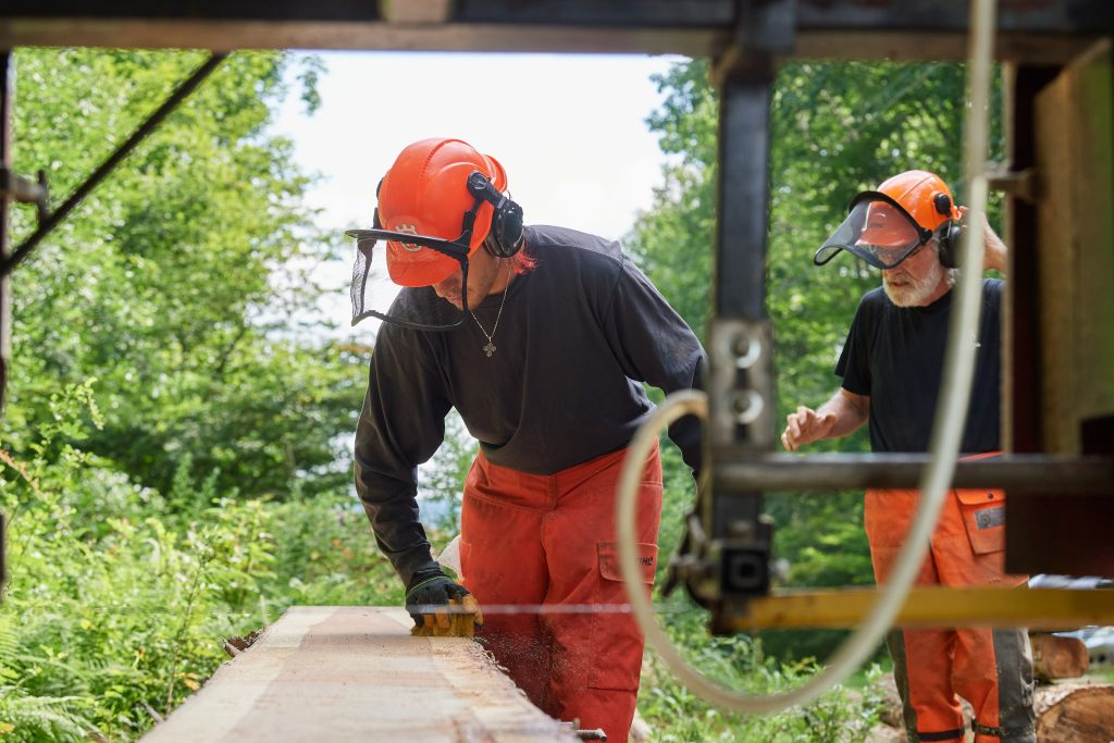 Jose Ayala '22 (CAHNR), left, brushes sawdust from a newly cut board from a log harvested in the Fenton Tract of the UConn Forest near Horsebarn Hill Road on Aug. 2, 2021. At right is Thomas Worthey, forest sustainability extension educator. (Peter Morenus/UConn Photo)