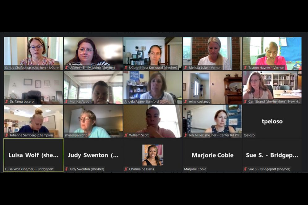 Screenshot from the SEB Leader Academy's August 2021 session.