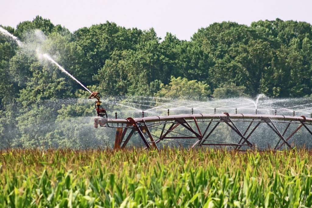 Irrigation in agricultural field