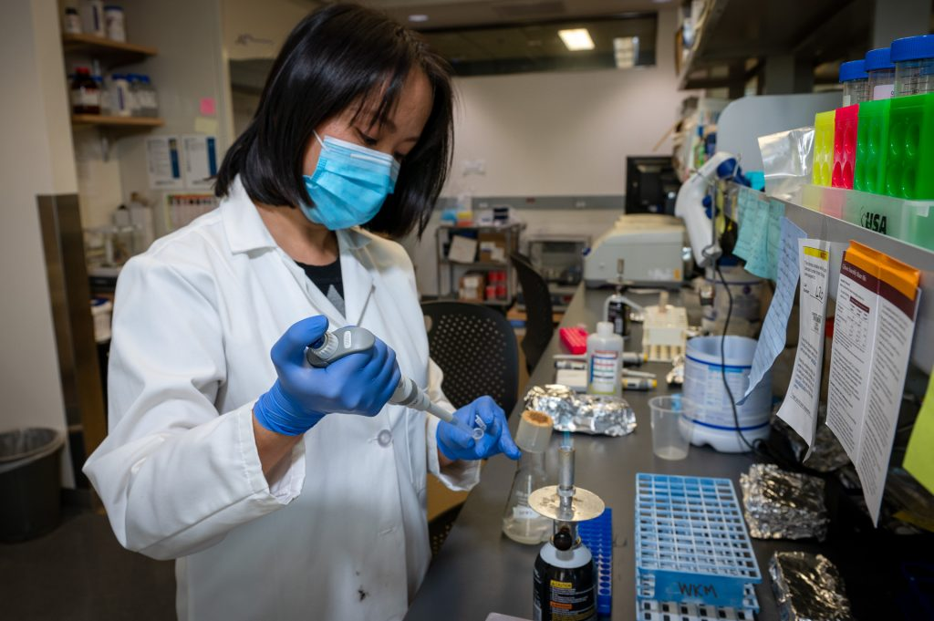 UConn Health researcher Wendy Mok has received the National Institutes of Health (NIH) Director's New Innovator Award for her research involving bacterial interactions and antibiotic persistence..